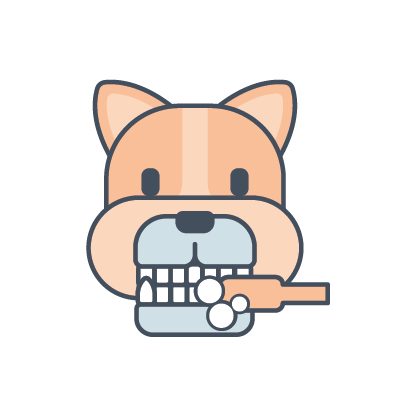 cat brushing teeth icon