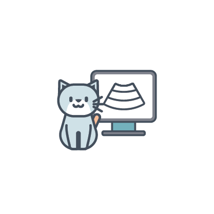 cat ultrasound icon