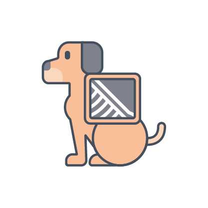 dog x-ray icon